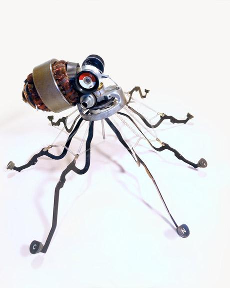 Octopus II - Jeremy Meyer